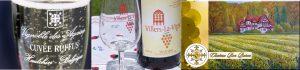 studiedag wijnbouwers